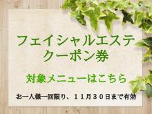 【期間限定】ダーマロジカフェイシャルクーポン